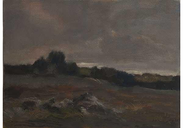 Пейзаж с тёмным небом
