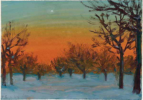Университетский парк. Зимний закат