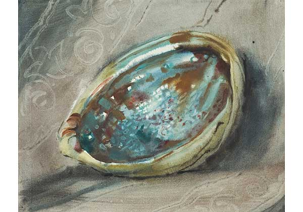 "From the ""shells"" series"
